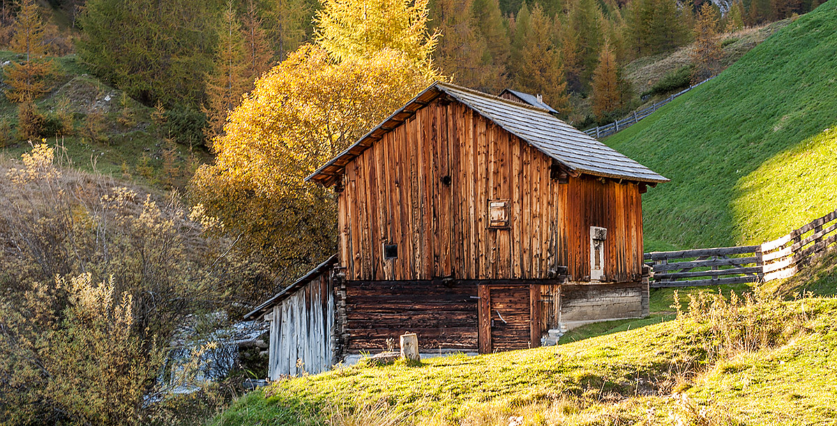 Log cabin surrounded by meadows and trees
