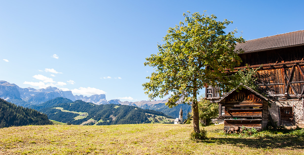 Wooden House on a meadow with mountain view